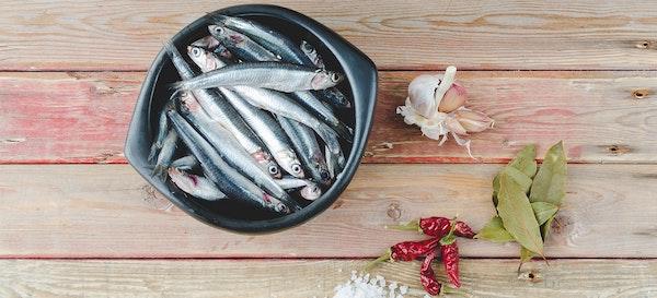 Mau Anak Tumbuh Cerdas? Beri Ikan Teri Sebagai Menu MPASI