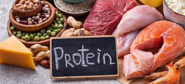 Peran Penting Protein di Menu Harian Ibu Hamil
