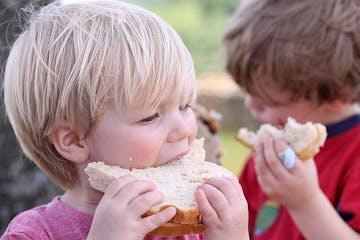 Seliak, Alergi Gandum, dan Sensitivitas Gluten: Bahaya Yang Mengancam Anak