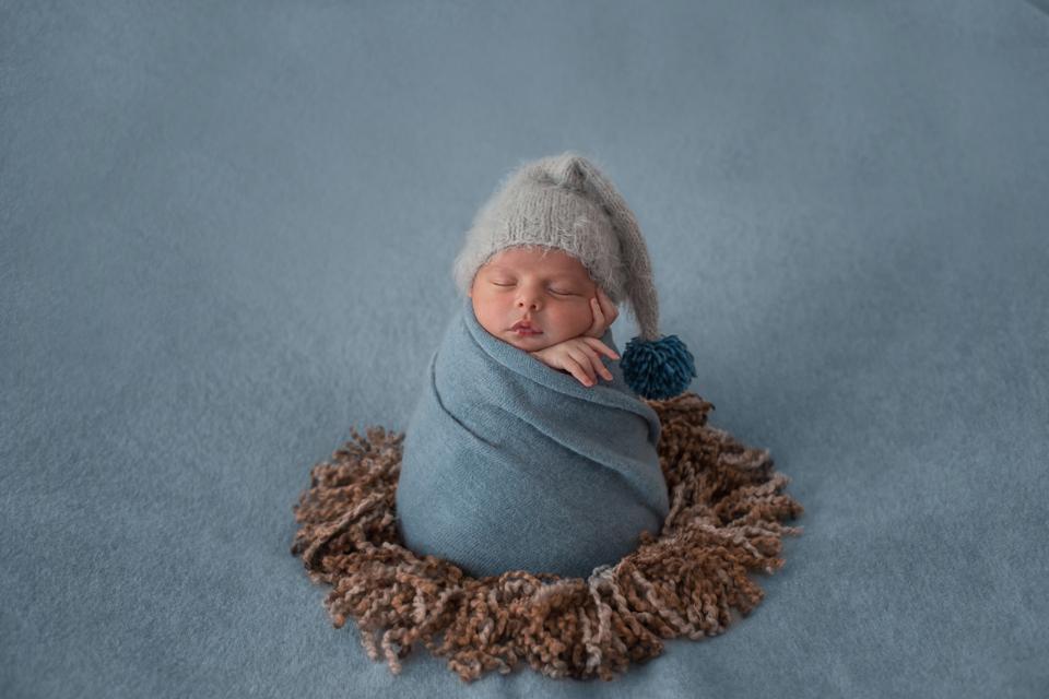 mitos-dan-fakta-seputar-gurita-bayi-4